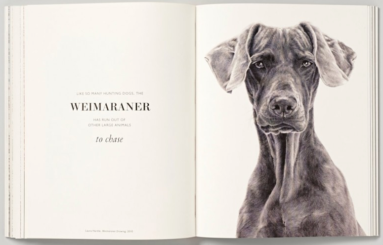 Coffee Table Book About Dogs Rascalartsnyc